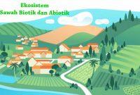 Contoh Ekosistem Sawah Biotik dan Abiotik